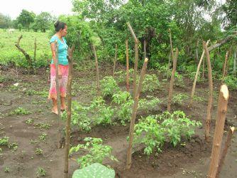 El treball de Pau i Solidaritat a Nicaragua